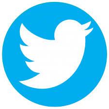 Survey Twitter Logo