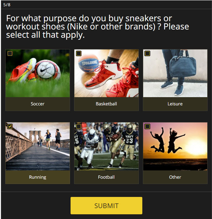 e-commerce survey example