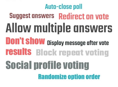 Online voting tool features